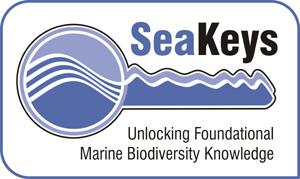 seakeys-logo-fw